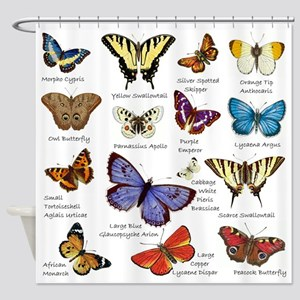 Butterfly Illustrations full colored Shower Curtai