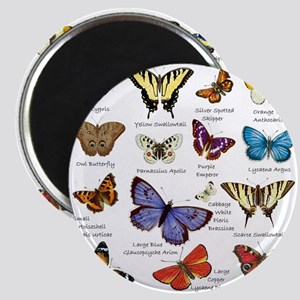 Butterfly Illustrations full colored Magnets