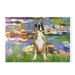 Lilies & Boxer Postcards (Package of 8)