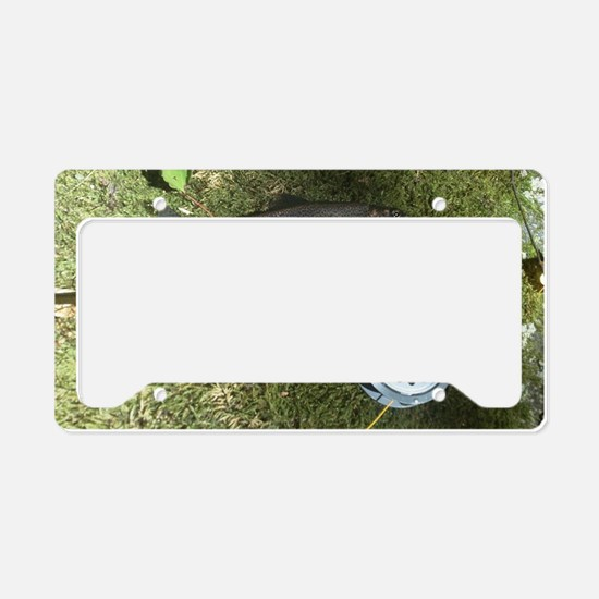Rainbow trout and rod License Plate Holder