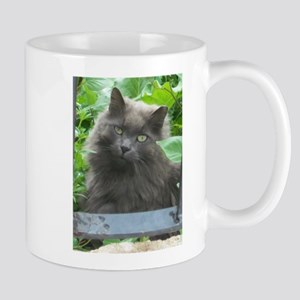 Long Haired Russian Blue Cat Mugs