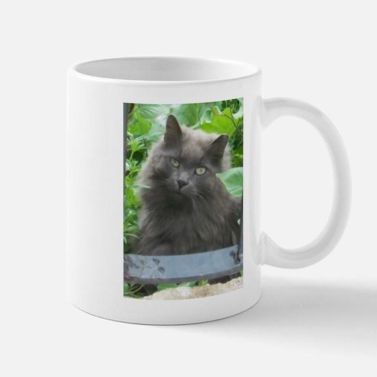 Long Haired Russian Blue Cat Mugs