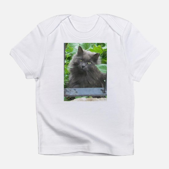 Long Haired Russian Blue Cat Infant T-Shirt