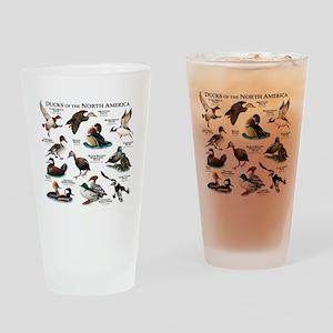 Ducks of North America Drinking Glass