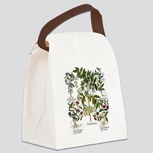 Vintage Flowers by Basilius Besle Canvas Lunch Bag