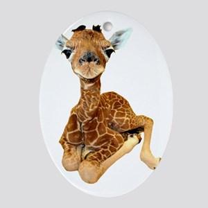 baby giraffe Oval Ornament