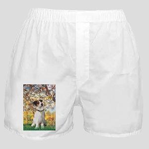 57-Spring-JRT3 Boxer Shorts