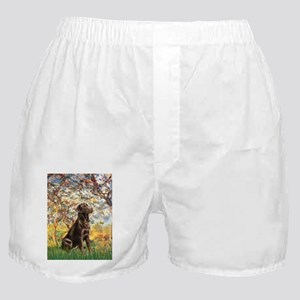 Spring - Chocolate Lab 11.png Boxer Shorts