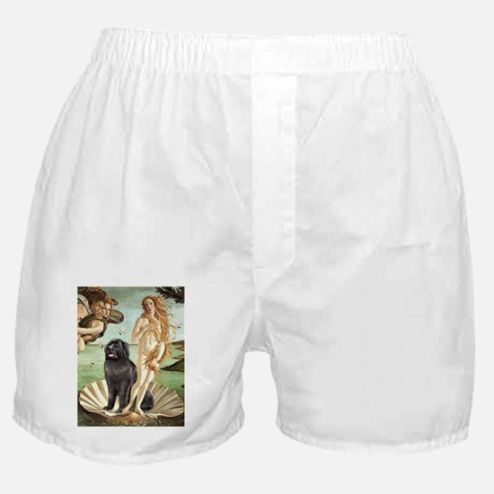 VENUS-Newfie-Blk2.png Boxer Shorts