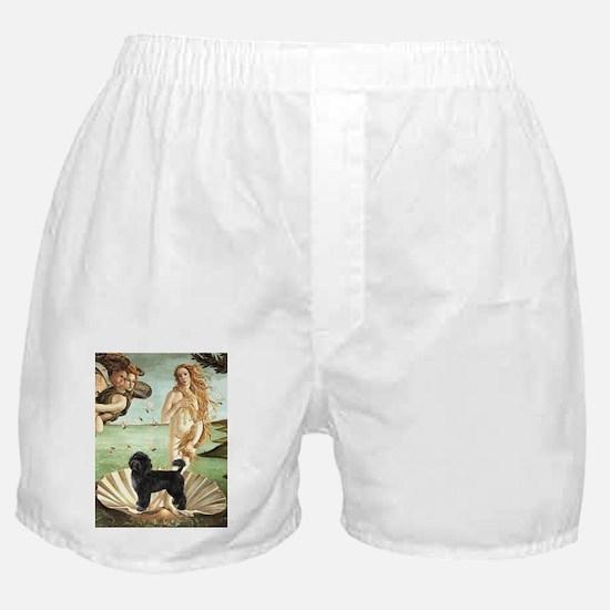 VENUS-PWD2-Retrvrcut.png Boxer Shorts