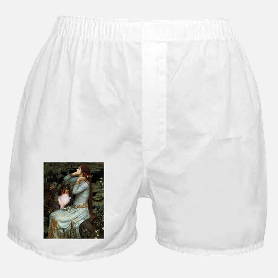 TR-Oph2-Sheltie-TRI1.png Boxer Shorts