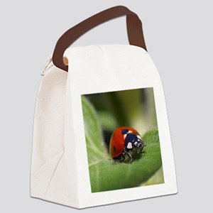 Ladybug 002 Canvas Lunch Bag