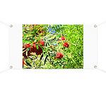 Rowan berries Banner