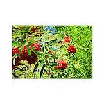 Rowan berries Magnets