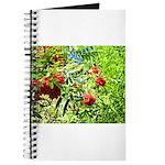 Rowan berries Journal