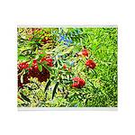 Rowan berries Throw Blanket