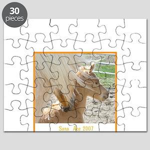 Sara and Ace Morgan T-Shirtdesign Puzzle