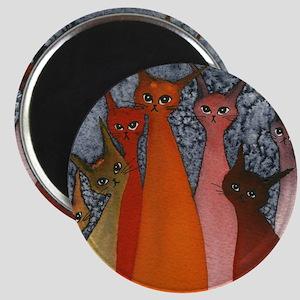 Casablanca Stray Cats Magnet