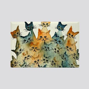 Charlottesville Stray Cats Rectangle Magnet
