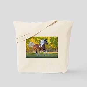 Pinto Arabian running free Tote Bag