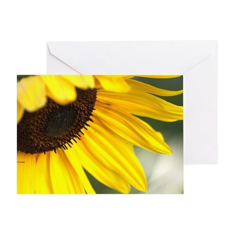 Personality of The Sunflower Greeting Card