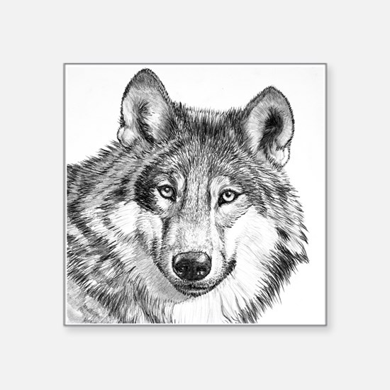 """Endangered Species--North A Square Sticker 3"""" x 3"""""""