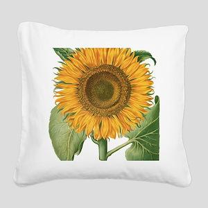 Vintage Sunflower Basilius Be Square Canvas Pillow