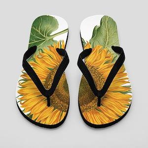 Vintage Sunflower Basilius Besler Flip Flops