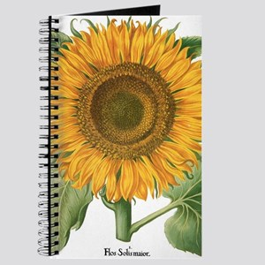 Vintage Sunflower Basilius Besler Journal