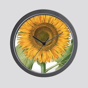 Vintage Sunflower Basilius Besler Wall Clock