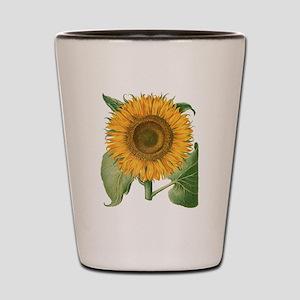 Vintage Sunflower Basilius Besler Shot Glass