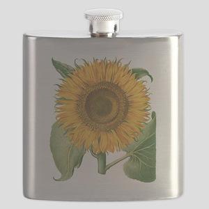 Vintage Sunflower Basilius Besler Flask