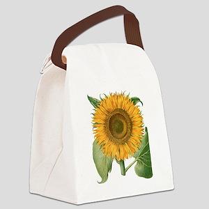 Vintage Sunflower Basilius Besler Canvas Lunch Bag