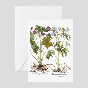 Vintage Geranium Flowers Greeting Card