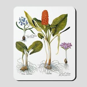 Vintage Flowers by Basilius Besler Mousepad