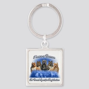 I Have A Dream No BSL Keychains