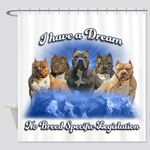I Have A Dream No BSL Shower Curtain
