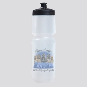 I Have A Dream No BSL Sports Bottle