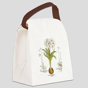 Vintage Flowers by Basilius Besle Canvas Lunch Bag