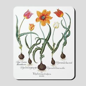 Vintage Tulips by Basilius Besler Mousepad