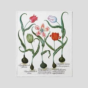 Vintage Tulips by Basilius Besler Throw Blanket