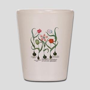 Vintage Tulips by Basilius Besler Shot Glass