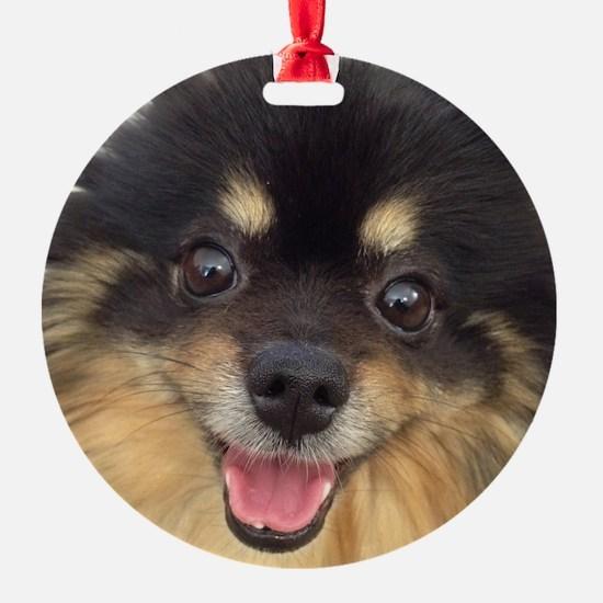 Happy Guida Ornament
