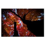 Fall Leaf Large Poster