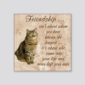 "Friendship - Cat Square Sticker 3"" x 3"""