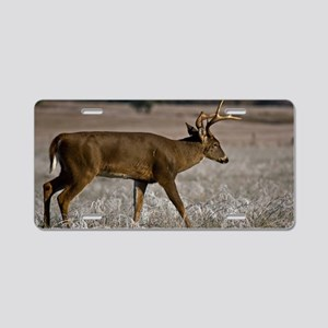 Whitetail in Cades Cove Aluminum License Plate