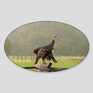 Wild Turkeys-Cades Cove Sticker (Oval)