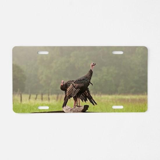 Wild Turkeys-Cades Cove Aluminum License Plate