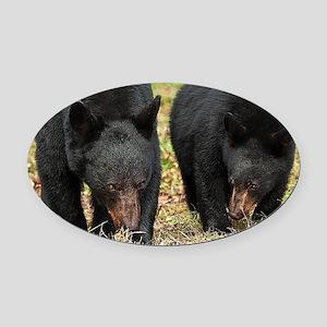 Black Bears-Cades Cove Oval Car Magnet