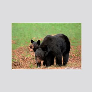 Black Bears-Cades Cove Rectangle Magnet